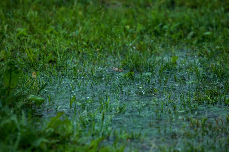 Dränering gräsmatta