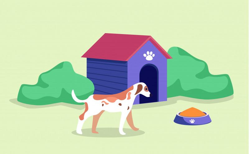 Hundkoja tillbyggnad